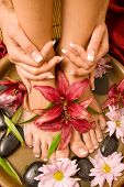 image of nail salon  - Woman - JPG