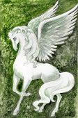 image of white horse  - hand drawn illustration of white pegasus over green fantasy background  - JPG