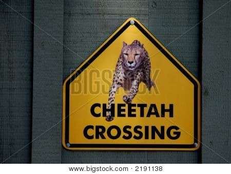 Cheetah Crossing Warning Sign