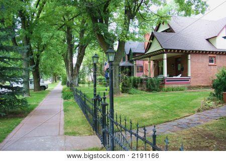 Tree Lined Sidewalk