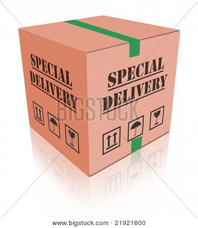 special delivery important shipment package sending express shipping parcel