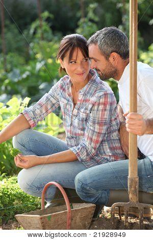 Romantic Couple in einer Zuteilung