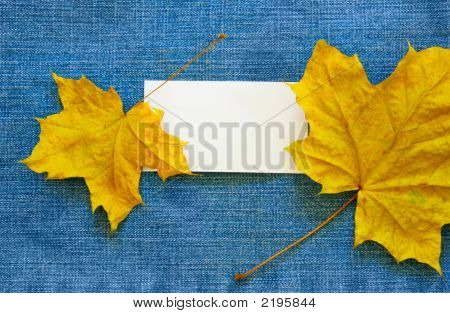 Blank Calling Card And Maple Leaves