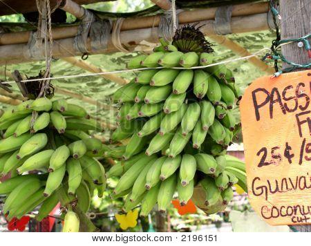 Banana Stand In Hawaii