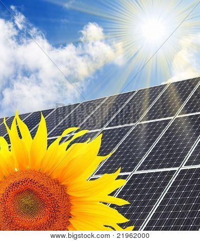 Solar energy panel and sunflower against sunny sky.