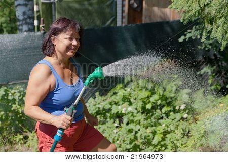 In Summer Garden