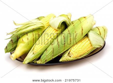 Ears of BBQ Corn on plate with husk and grill marks over white background with shadow