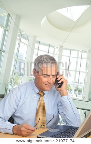 Middle Aged Businessman seated at desk talking on phone looking at his laptop computer in modern office setting