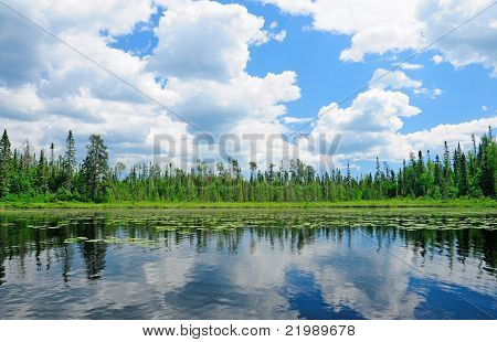 Reflections In The North Woods