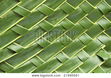 Handicraft  Art With Coconut Leaf