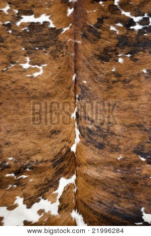 Brown And White Real Cow Skin