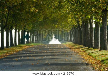 French Fall Country Lane