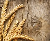 foto of whole-grain  - Wheat Ears on the Wood Background - JPG