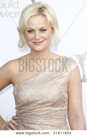 LOS ANGELES, CA - FEB 19: Amy Poehler at the 2012 Writers Guild Awards at The Hollywood Palladium on February 19, 2012 in Los Angeles, California