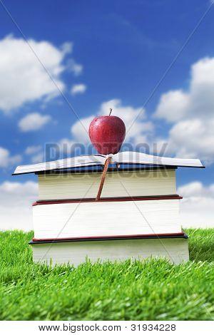 Summer Reading Outdoor