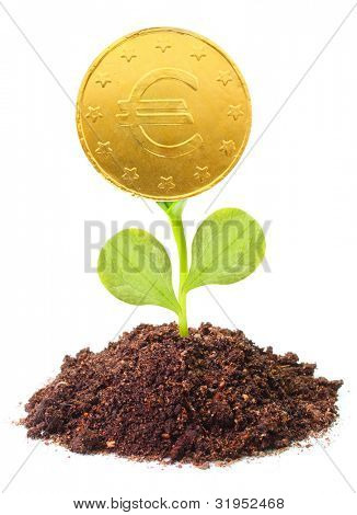 Money growth. Golden coin growing from soil. Financial metaphor.