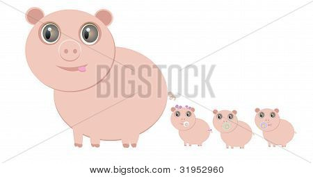 Mother Pig And Her Little Piglets