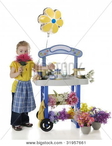 An adorable preschooler peeking over the bright pink flowers she's sniffing by her flower stand.  On a white background.  The stand's signs are left blank for your text.