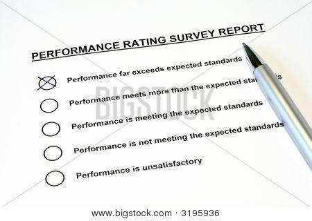 Performance Rating Survey Report