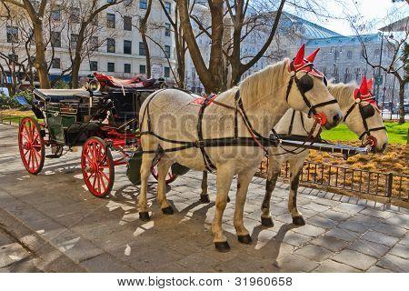 Fiaker Horse Carriage In Vienna, Austria