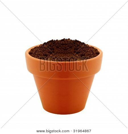 Clay Pot With Soil