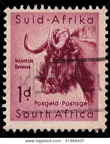 South Africa Postage Stamp Black Wildebeest 1954
