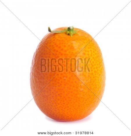 Closeup von einem Kumquat auf weißem Hintergrund