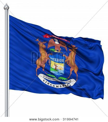 Waving Flag of USA state New York