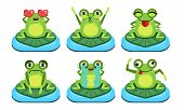 Green Funny Frog Characters Set, Cute Amphibian In Different Activities Vector Illustration poster