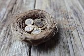 Retirement savings British pound coins in birds nest egg concept for pension plans poster