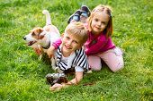 Kids Play With Cute Jack Russel Terrier. Children And Dog Playing In Sunny Summer Garden. Little Gir poster