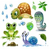 Set Of Cartoon Watercolor Amphibians, Turtles, Snails And Caterpillars poster