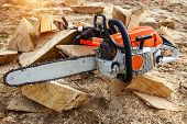 Chainsaw For A Tree. Sawing Firewood Outdoors. poster