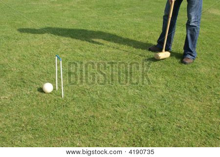 Goal. Achievement. Playing Croquet