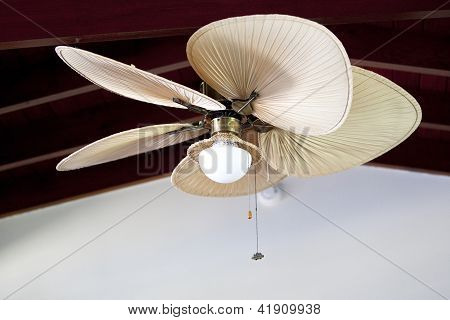 Tropical Electric Fan An Ceiling