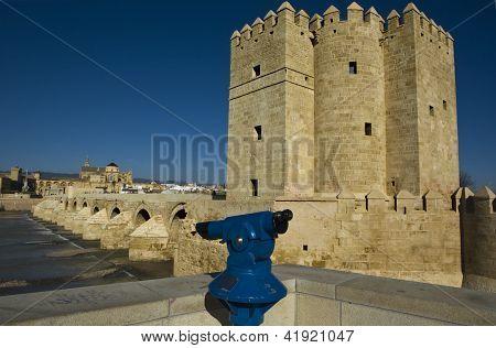 Calahorra Tower And Roman Bridge