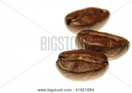 Three coffee beans on white