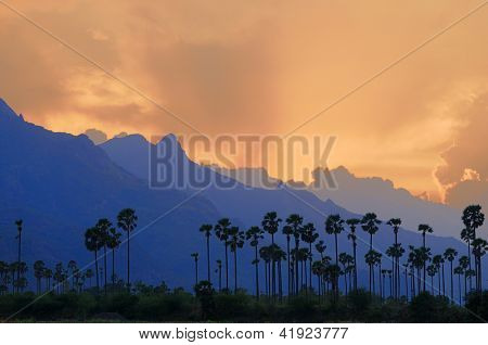beautiful landscape at dusk in southern india