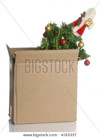 Christmas Tree In A Box