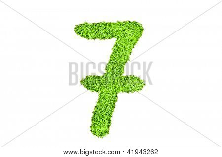 Number seven from grass