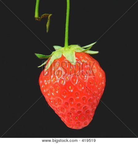 Stemmed Ripe Strawberry