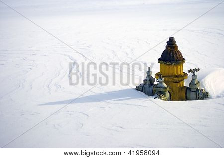 Yellow Fire Hydrant in Winter Snow