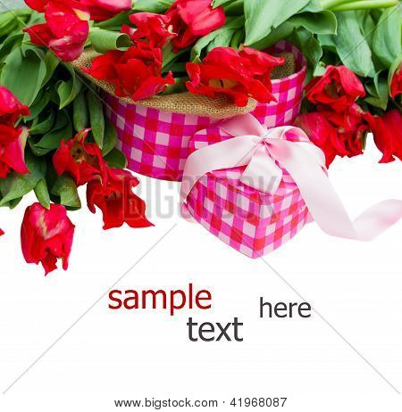pile of spring tulips with heart  gift box