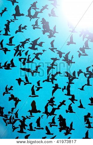 black silhouettes of birds on a blue background