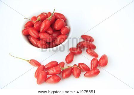 Goji Berries (Lycium barbarum)