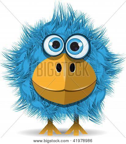 Engraçado pássaro azul