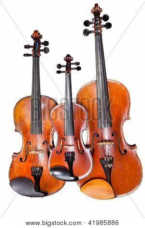Three Sizes Of Violins