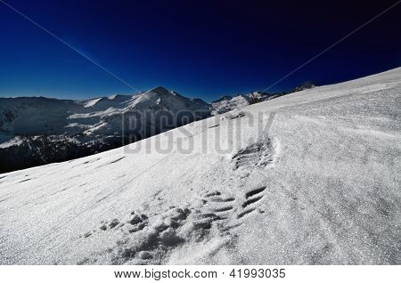 Close Up Of Foot Print On The Mountain Hill