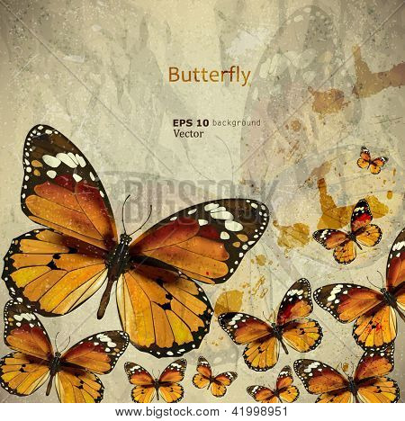 Colorful vintage background with butterfly. Grunge paper texture. Vector background