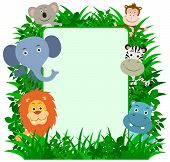 stock photo of koalas  - Jungle Animals Frame with copy - JPG